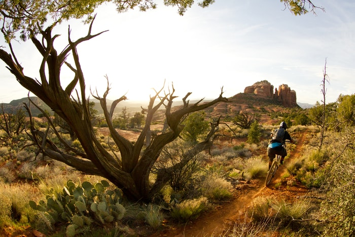 Sedona, Arizona is a perfect place to visit on your next wellness break