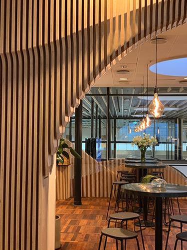 Carlsberg Aviator Lounge
