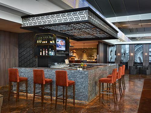 Plaza Premium Lounge (Domestic Departures)_New Delhi Intl_India