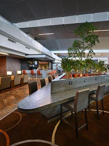 Plaza Premium Lounge (Domestic Departures)_New Delhi Intl_India