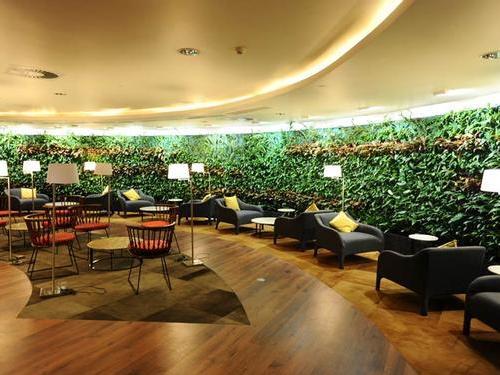 Amedee Maingard Lounge