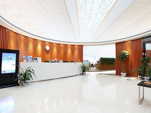 Aeropuerto Internacional Lukou Nankín NKG Terminal 2