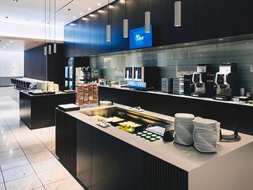 ANA Lounge_Tokyo Narita Intl_Japan