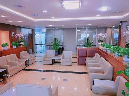 The Airport First Class Lounge