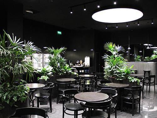 Opal Business Lounge