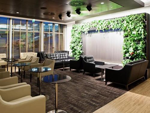 Executive Lounge - Bolero